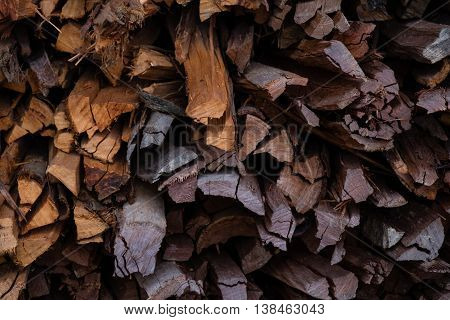 Firewood remains an important source of fuel for cooking in rural areas