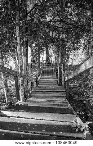 A wooden pathway at Batang Ai Longhouse Resort, Sarawak, Malaysia.