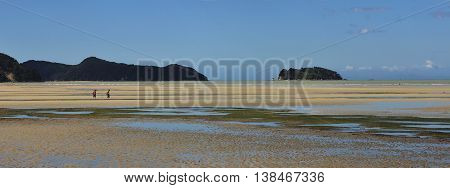 Sandy Marahau beach at low tide. Little island. Scene in the Abel Tasman National Park New Zealand.