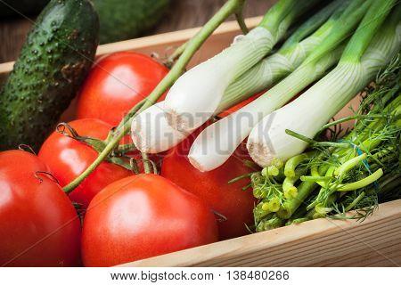 Fresh Vegetables From The Home Garden.