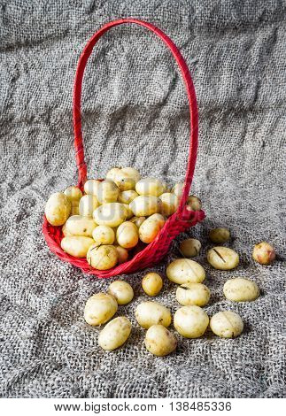 Basket of fresh tasty new potatoes placed on the sack.