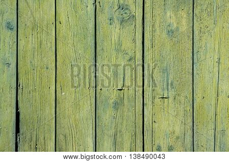 Old weathered gree yellow grunge boards surface of wooden garden fence as background