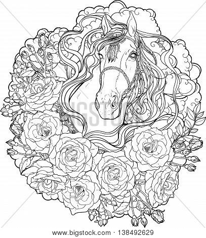 Portrait of a horse with clouds and roses. Coloring page.
