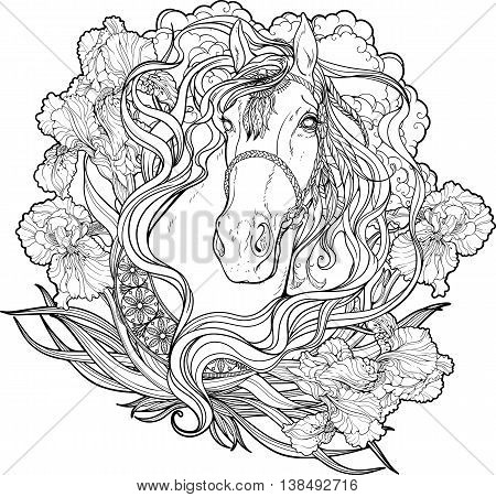 Portrait of a horse with clouds, flowers and leaves. Coloring page.