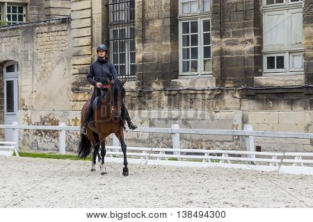 CHANTILLY, FRANCE - MAY 14, 2015: This is part of the show at the Museum of Horses - a demonstration of dressage horses.