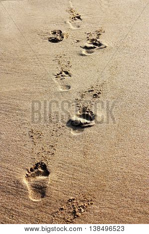 Footprints in the sand on the famous beach Costa Rei in Sardinia