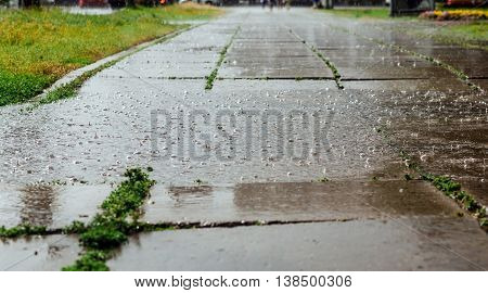 Wide picture of bubbles in a puddle of rain during a heavy rain