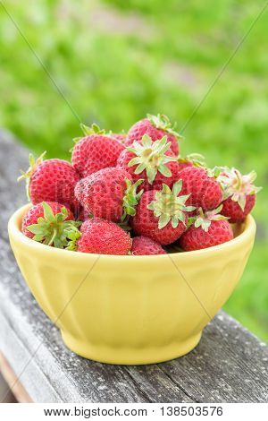 Fresh picked strawberries in yellow bowl on a wood railing