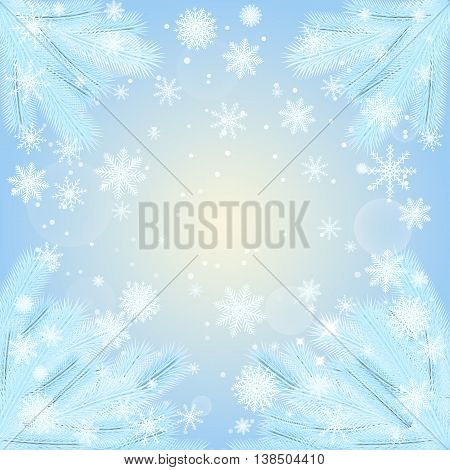 vector illustration. Christmas background with fir branches covered with hoar-frost with snowflakes