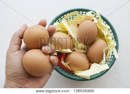 hand holding egg of chicken have in basket paper protect broken