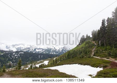 Skyline Trail at Mt Rainier National Park, Washington