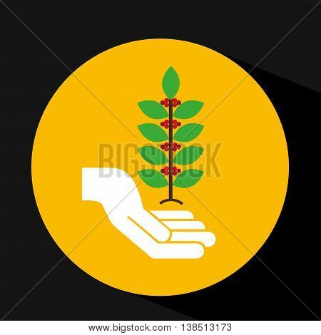 hand holding coffee bean icon, vector illustration