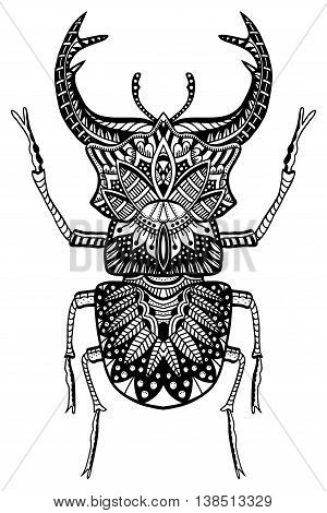 Black and white hand drawn zentangle stylized beetle. Doodle ethnic patterned vector bug. African, egyptian totem. Sketch for tattoo, poster, print or t-shirt