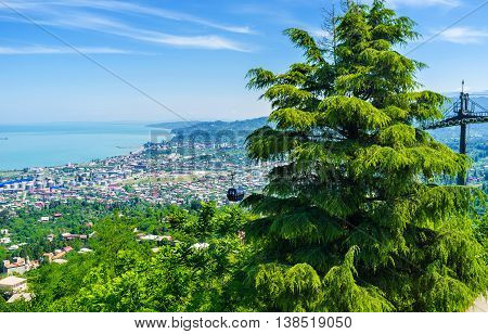 The view from the top of Anura Mount on the riding lift of Cableway the indented coast of Batumi and the lush fir tree on the foreground Georgia.