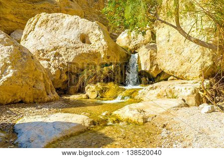 The mountain river with the tiny falls in Ein Gedi oasis Judean desert Israel.