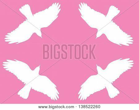 Birds.eps
