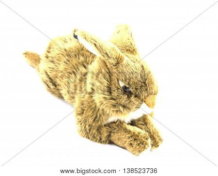 Funny toy rabbit fur isolated on white background