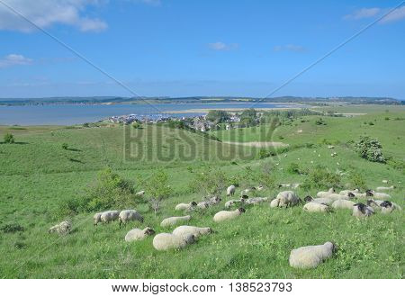 View to Village of Gager at Moenchgut Biosphere Reserve on Ruegen Island,baltic Sea,Mecklenburg western Pomerania,Germany