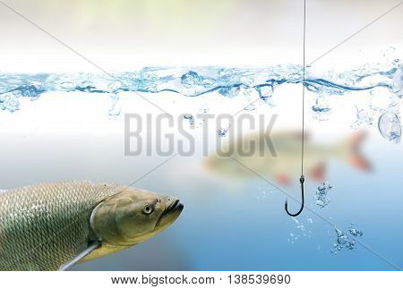 Fishing hook under water and fishes. Fishing concept.