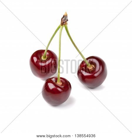 Close Up Isolated Fresh Cherries With Water Drops