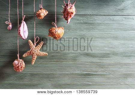 Seashells and starfish hanging on the rope vintage styling.