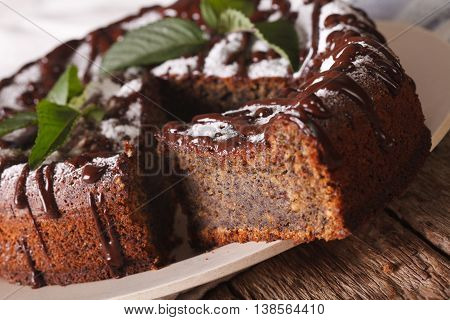 Poppy Seed Cake With Chocolate Frosting And Mint Macro. Horizontal