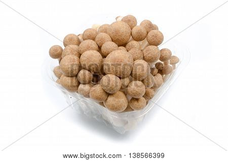 Brown beech mushrooms closeup isolated on white background.