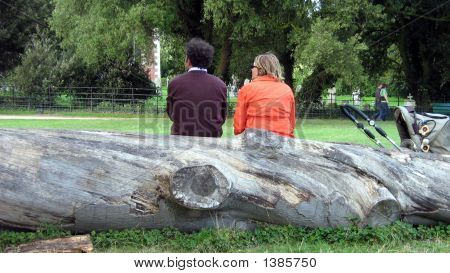 Man And Woman/Couple Sitting On A Stump Of A Tree