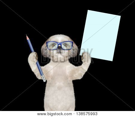 dog in glasses holding a blue pencil and blank -- isolated on black