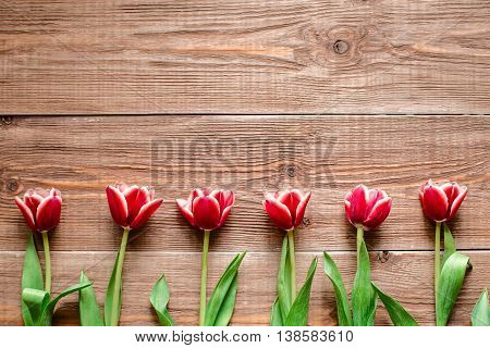 Border of lovey red tulips. Flowers on wooden background. Copy space. Top view.