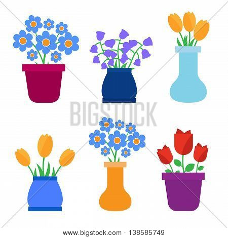 Spring flowers in pots and flower eps 10