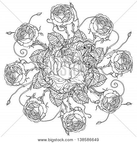 luxury flowers bouquet in shape of mandala for adult coloring book or for zen art therapy drawing. Hand-drawn, vector, floral, very detailed, contoured, coloring book style.