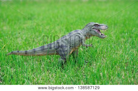 tyrannosaurus toy stands on glass horizontal composition