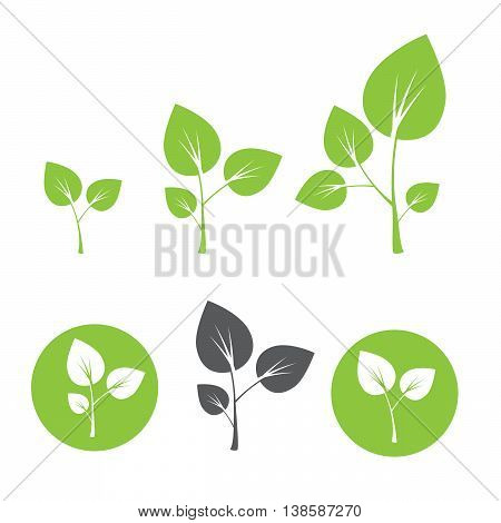 Sprout icon vector illustration in flat style eps10