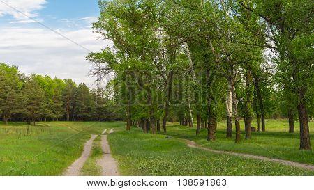 Seasonal landscape in central Ukraine near Kremenchuk town