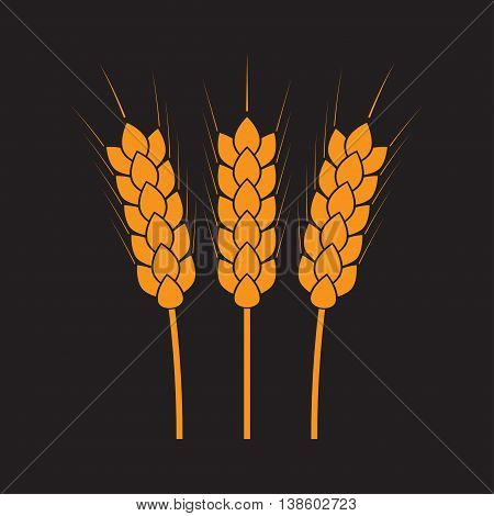Wheat ears or rice icon. Agricultural and crop symbols isolated on dark background. Design element for bread packaging or beer label. Vector illustration.