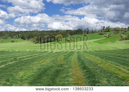 Mowed meadow with striped pattern in a hilly, rural landscape in spring