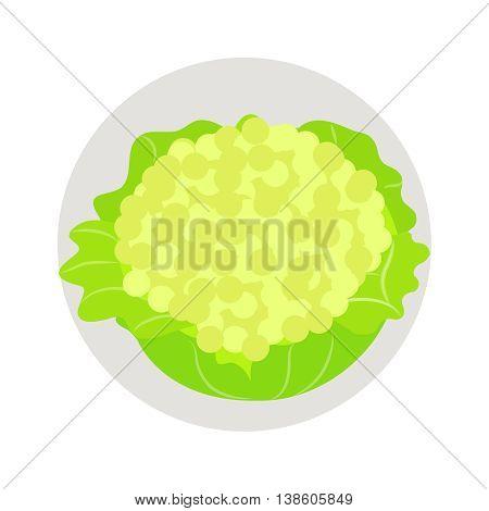 Cauliflower flat icon vegetable harvest vector illustration