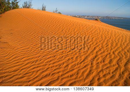 sand in the desert