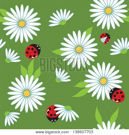 chamomile and ladybugs on a green meadow seamless vector background