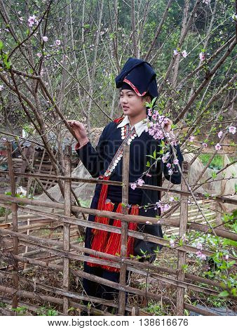 YEN BAI, VIETNAM, February 12, 2016 the Dao ethnic minority girls, highland Yen Bai, roam orchards, in the spring