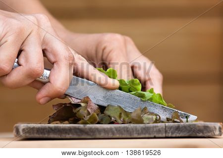 hands cutting green fresh lettuce on the wooden cutting board
