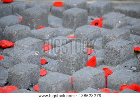 Poppy's scattered on cenotaph remembering fallen soldiers
