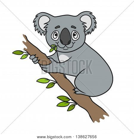 Cartoon koala. coloring book. Vector illustration of cute animal. doodle