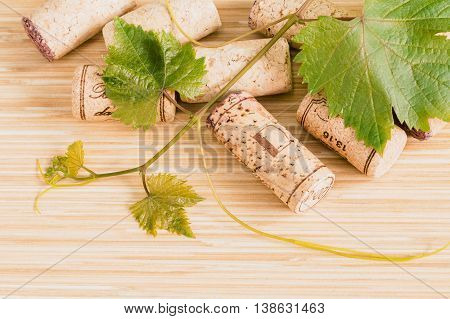 Composition Of Wine Corks With Grape Vine And Leaves On Wooden Table.