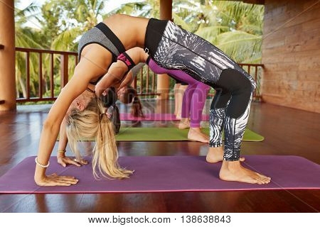 Side view of young women sportswear working out in gym doing backbend bridge Pose. Fitness females doing chakrasana posture on exercise mat at yoga class.