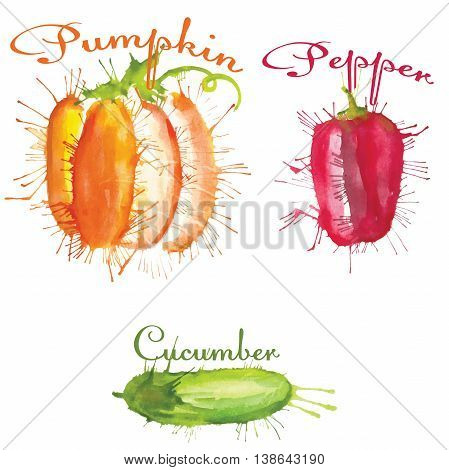 watercolor set of vegetables pumpkin, cucumber, pepper