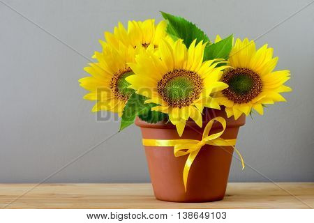 Thanksgiving or autum season greeting concept with sunflowers in a pot on a wooden table