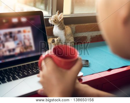 Soft Image Baby Cats With Man Working On Laptop And Drink Coffee.