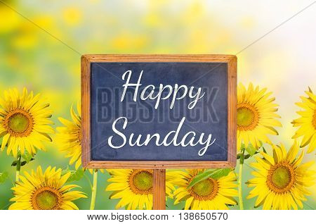 Happy Sunday on blackboard with sunflower background